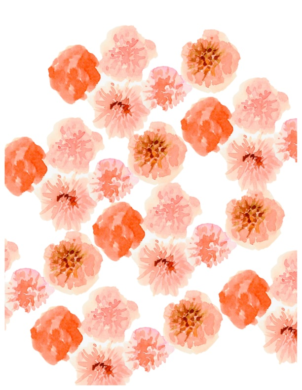 blush blossoms jpg.jpeg